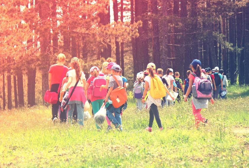 Kindergruppe beim Wandern