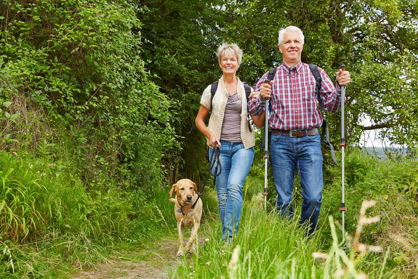 Glückliches Paar Senioren macht Nordic Walking mit Hund im Wald